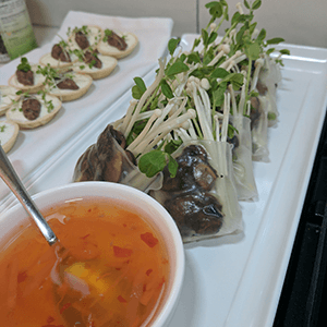 rice paper rolls finger food canape catering service